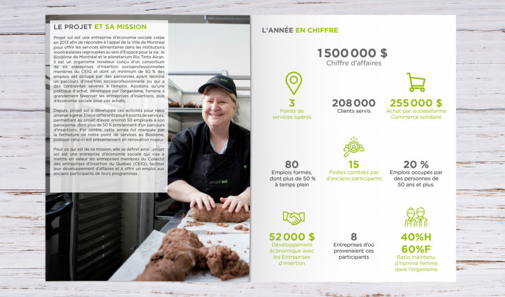 rapport annuel projet sol